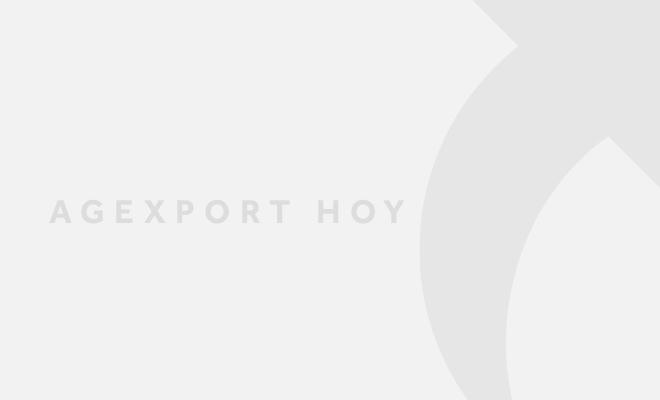 Agexport Hoy generica