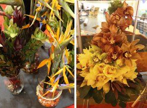 Proteas, aves del paraíso y flores de corte guatemaltecas se exhibieron en PMA Fresh Summit