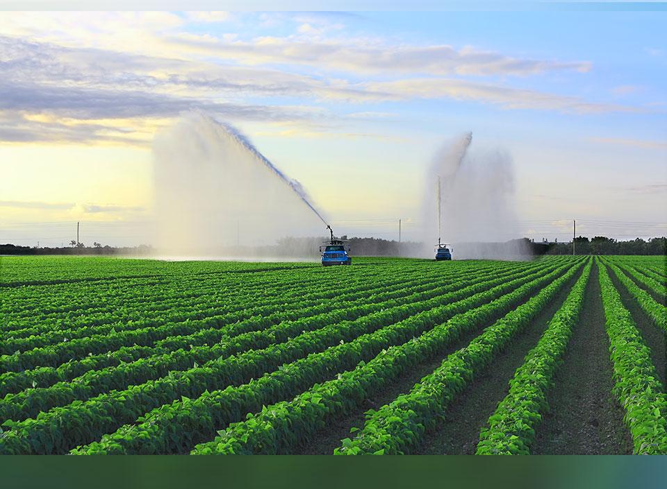 Congreso Agrícola busca diversificar la oferta agrícola