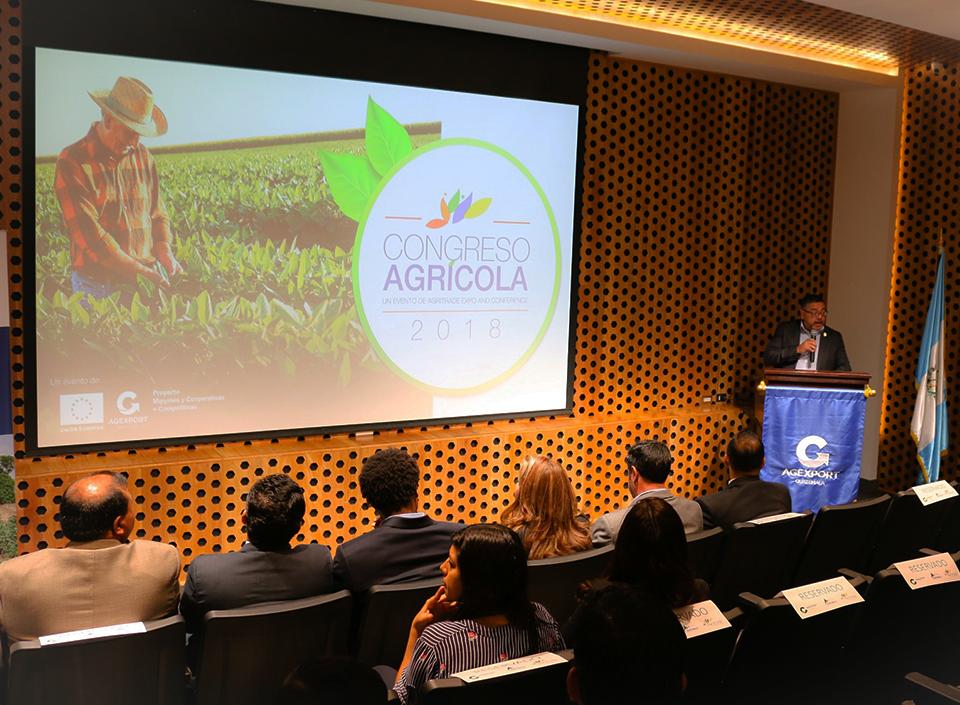 desarrollo oferta agrícola de Guatemala