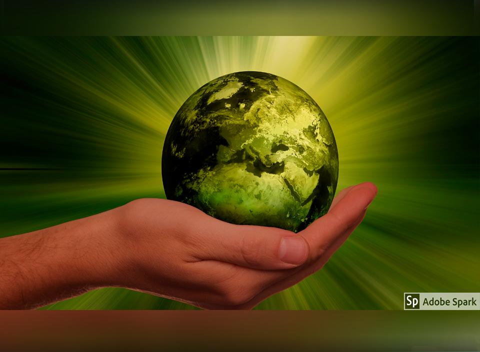 sostenible en las empresas exportadoras