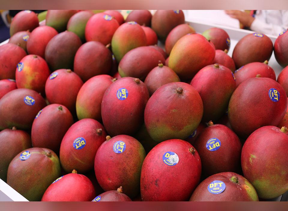 productos agrícolas de exportación