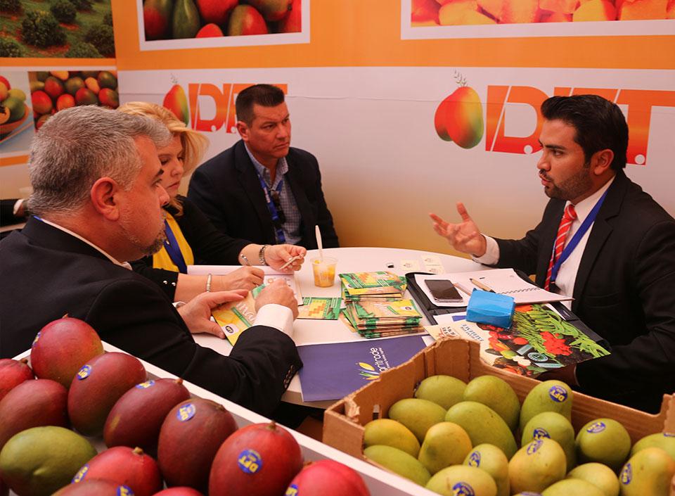 oferta agrícola exportable de Guatemala