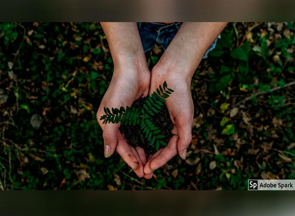 pymes en favor del ambiente