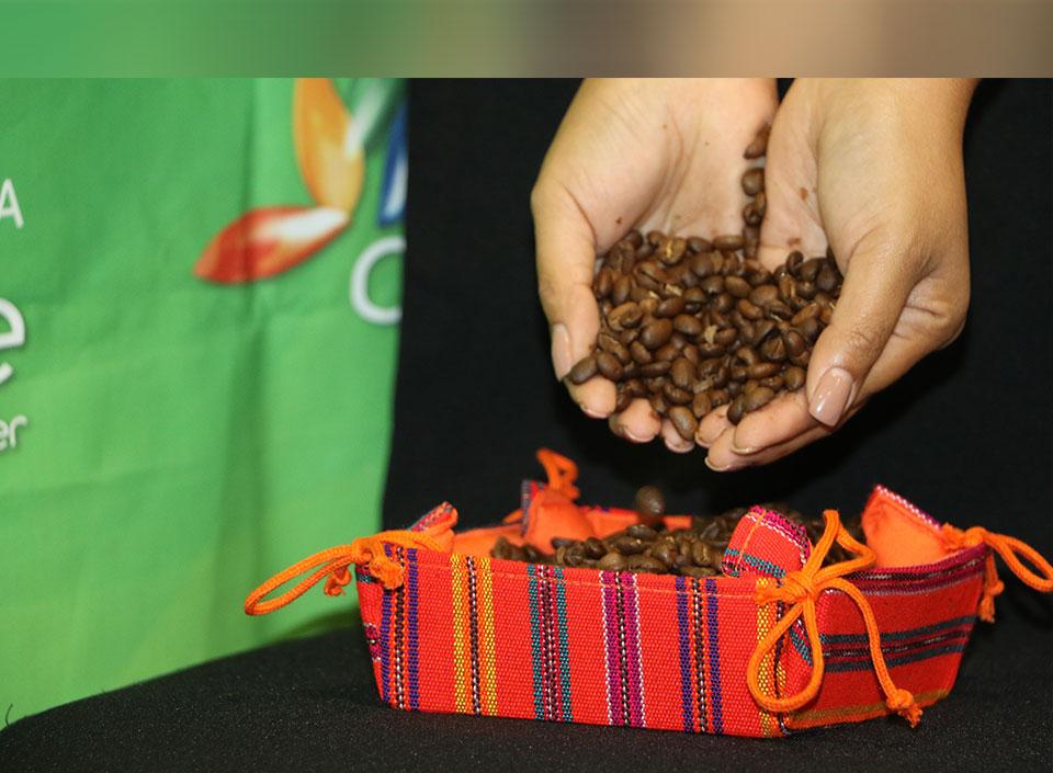 subasta de cafés diferenciados de AGEXPORT