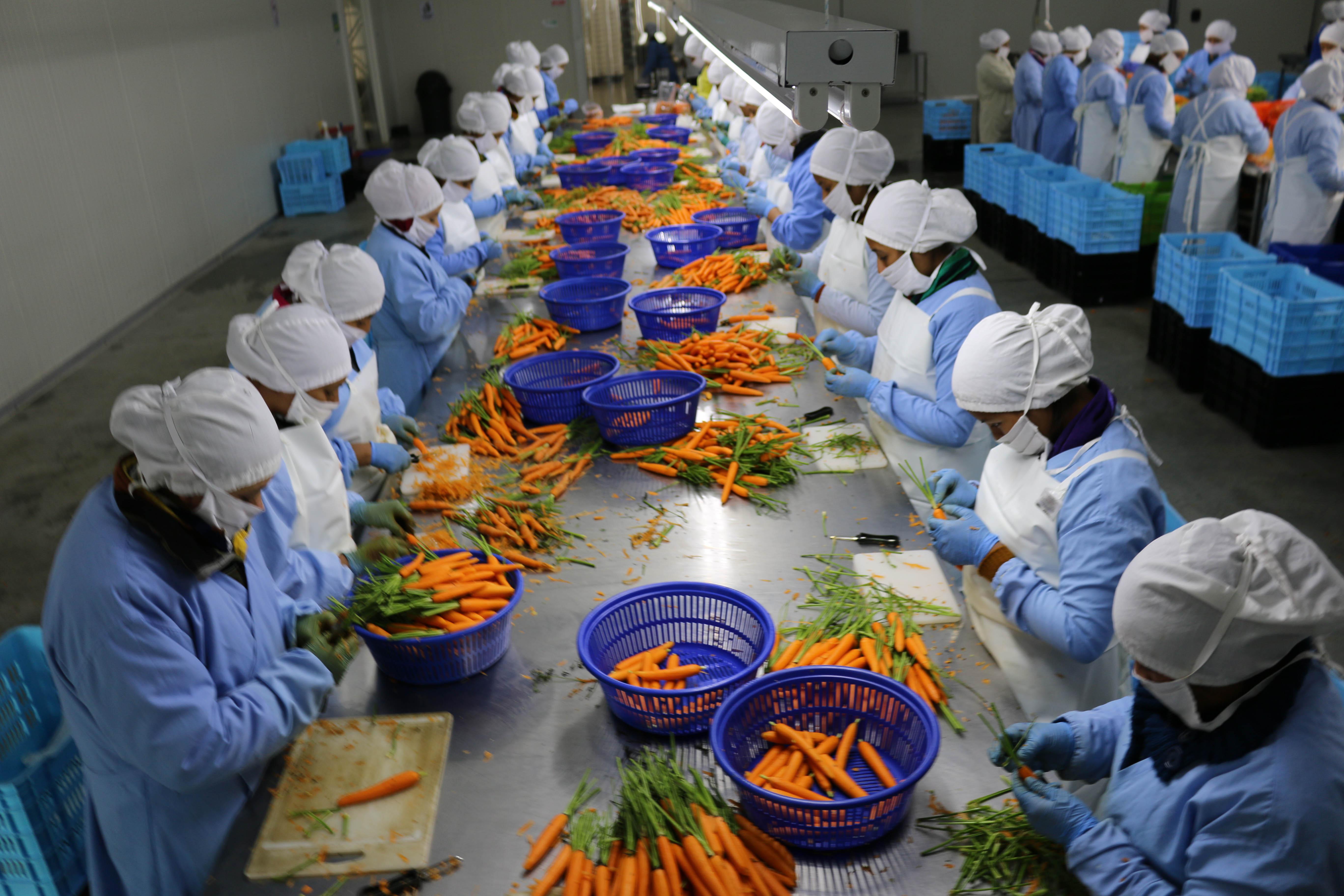 empleo formal en el área rural guatemalteca