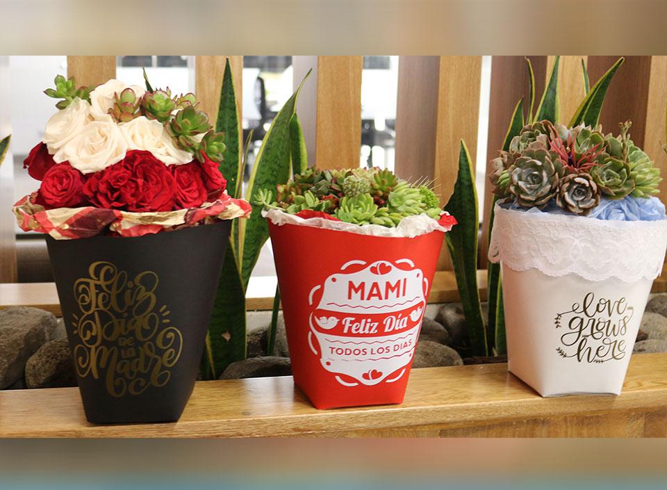 flores guatemaltecas de exportación
