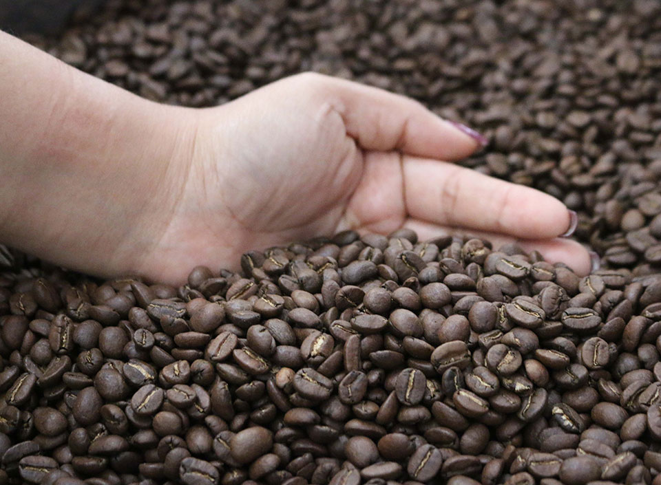 comité de cafés diferenciados de Guatemala