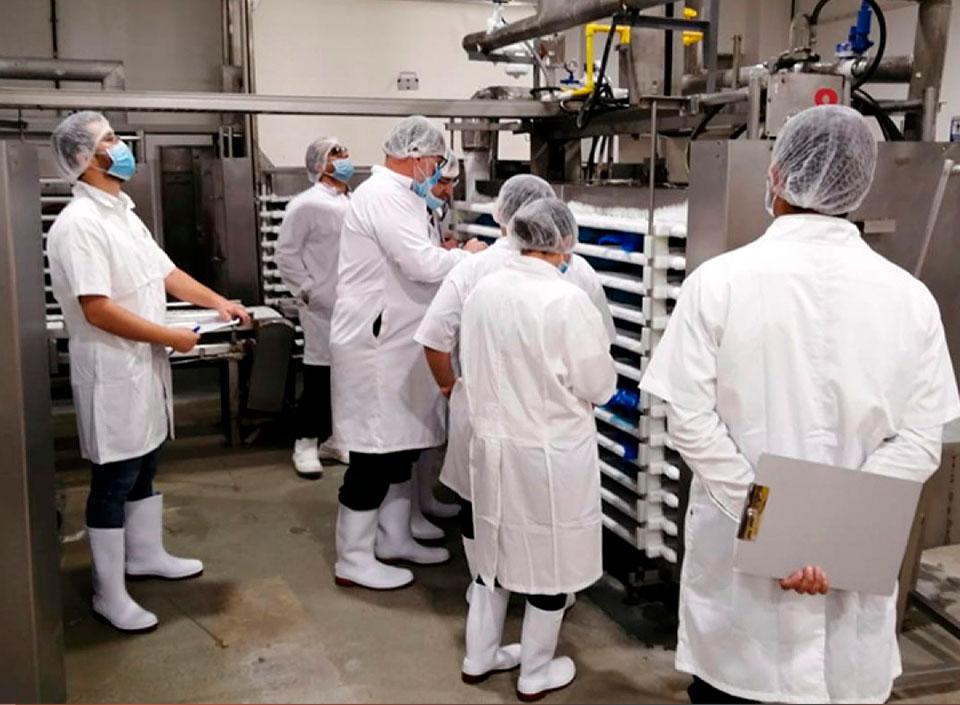 camarones guatemaltecos se exportan a la Unión Europea