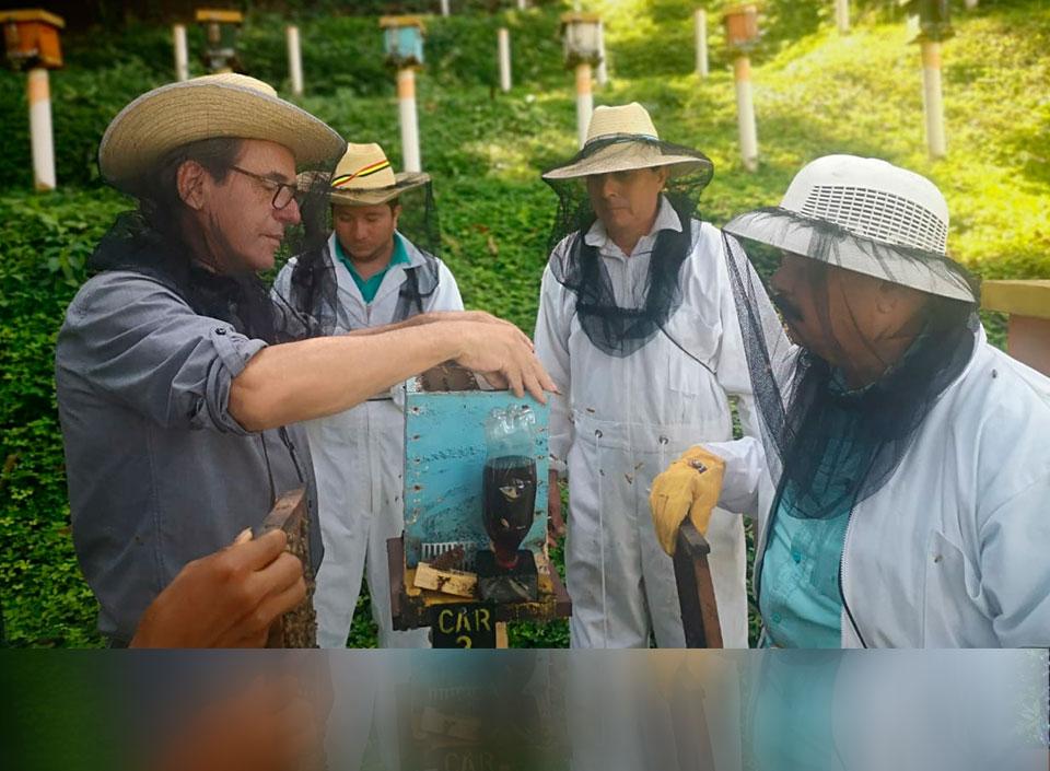 miel de Guatemala