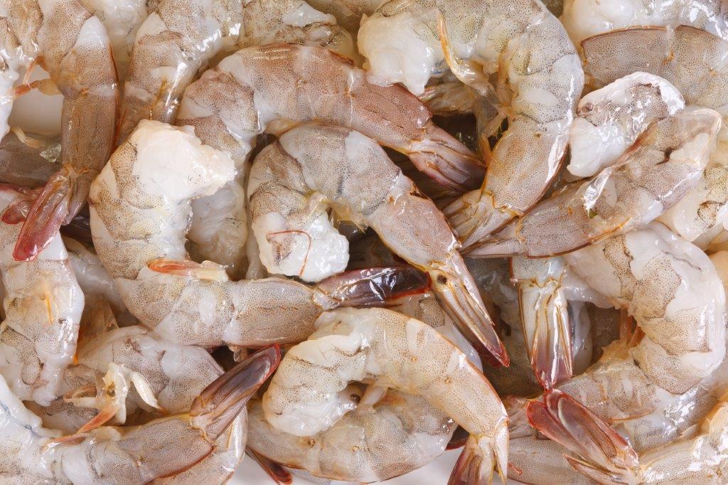 exportación de camarón de Guatemala
