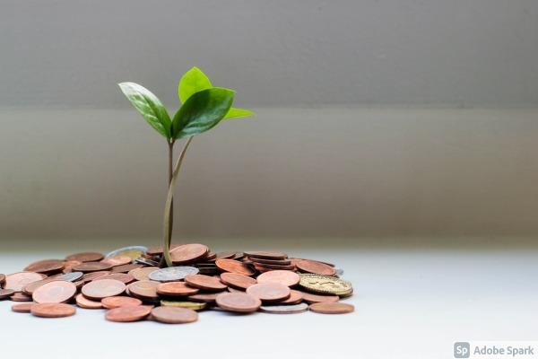 Participe en el desarrollo de proyectos sostenibles e innovadores