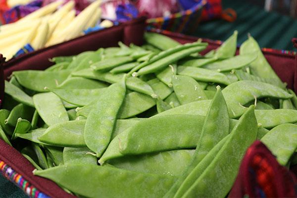 Altas tarifas en navieras castigan a pequeños productores de arvejas y vegetales de exportación