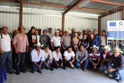 66 productores de Aguacate Hass se certifican en GLOBALG.A.P. para exportar a Europa
