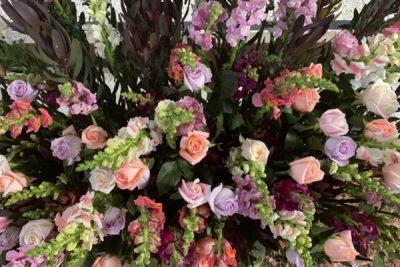 Industria de plantas ornamentales, follajes y flores necesita reactivación, precios altos de cargas restan competitividad