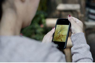 Obtenga el mayor provecho de su Smartphone: cómo tomar fotos con su celular