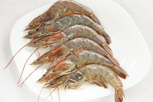Formulación de la Ley General de Pesca y Acuicultura, uno de los logros más destacados del sector