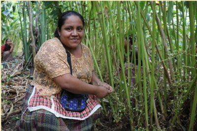 """""""Apoyo a microemprendimientos de mujeres en comunidades de la Zona de Adyacencia Guatemala-Belice"""""""