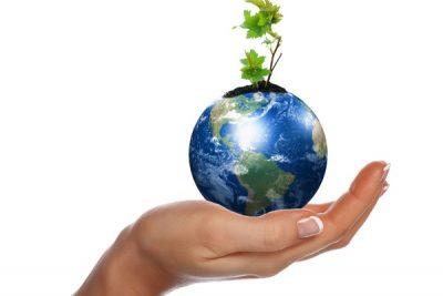 ¿Cómo está mi empresa en temas de sostenibilidad?